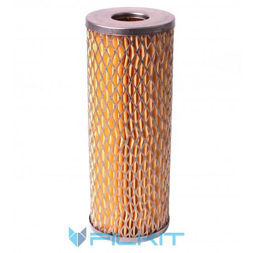 Fuel filter (insert) РД-019 [Промбізнес]