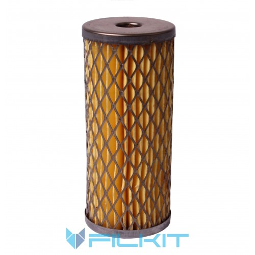 Fuel filter (insert) РД-009 [Промбізнес]