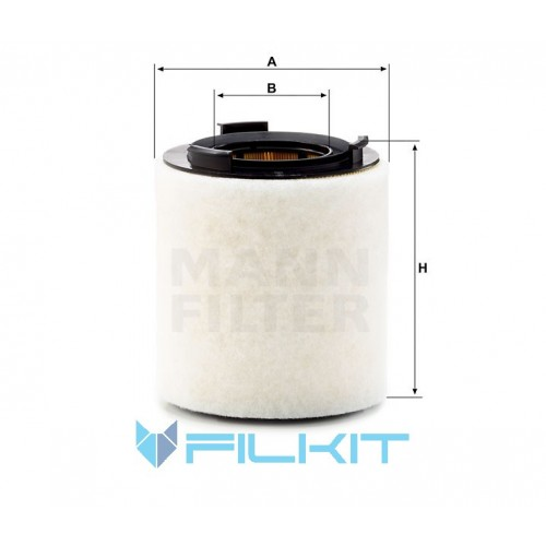 Air filter C 15 008 [MANN]