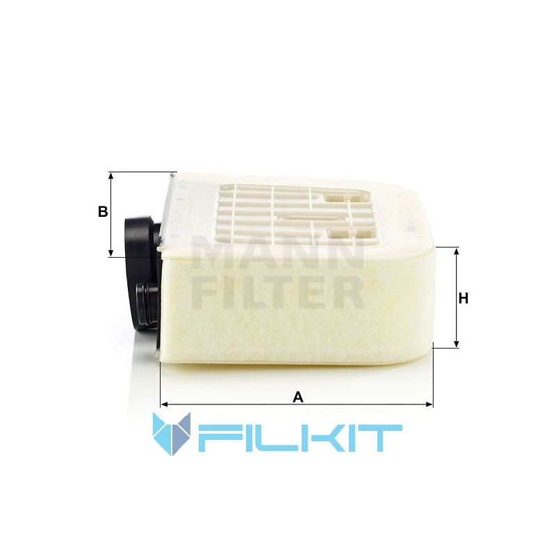 Air filter C 38 011 [MANN]